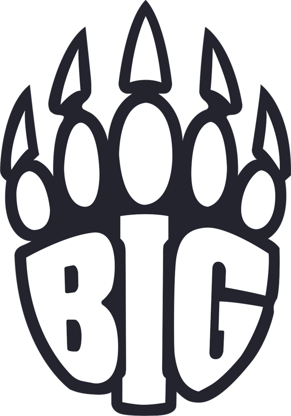 BIG | CS:GO