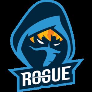 Rogue | PUBG