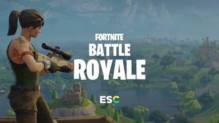 Fortnite came to esports