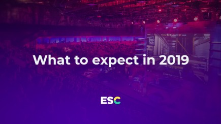 What do we expect from 2019