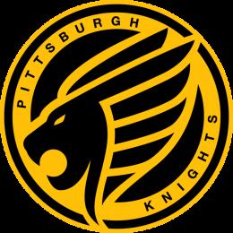 Knights | Paladins