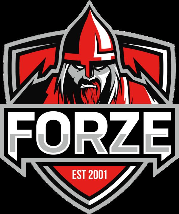 forZe | CS:GO